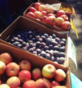 farmers market in ballard will be a place you can visit if you make Seattle your home