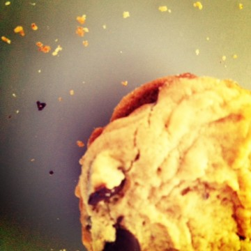 cookie and crumbs