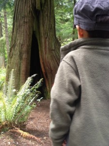 how to hike with kids we take our time and look for interesting things to see