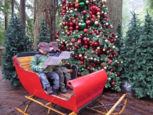 Christmas ideas with kids: sleigh at capilano suspension bridge