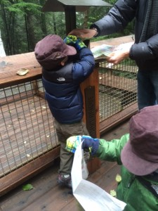 passport stamps at capilano suspension bridge is fun for kids