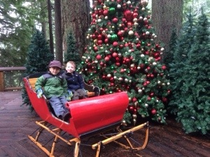 Christmas Display at Capilano Suspension Bridge
