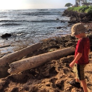 exploring beaches at turtle bay