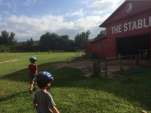 stables at turtle bay