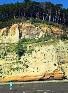 very cool cliff in discovery park on a hiking adventure with kids