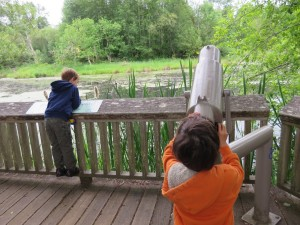 nisqually wildlife refuge hike with kids