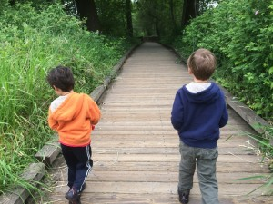 walking the boardwalk at Nisqually Wildlife Refuge