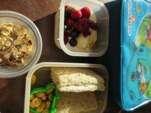 a lunch idea for kindergarten