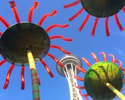 solar flowers at Seattle Center