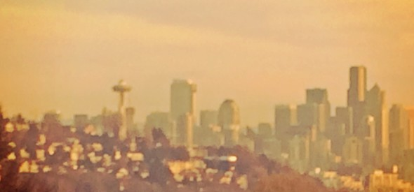 seattle skyline at Ella Bailey Park
