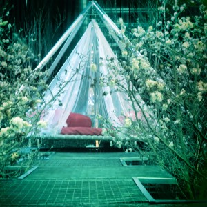hanging tent at the northwest flower show