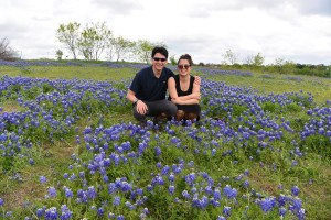 bluebonnets in ennis