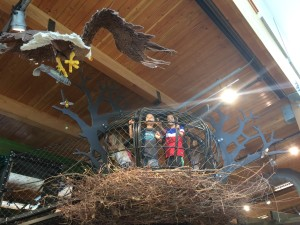 eagle nest at the Hands On Childrens museum