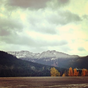 snow is falling in snoqualmie pass and at the summit in November