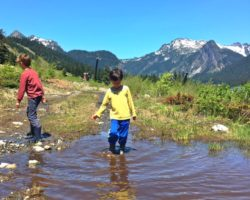 Finding frogs in Snoqualmie Pass hiking with kids