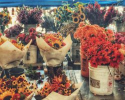 Pike Placde Market flowers