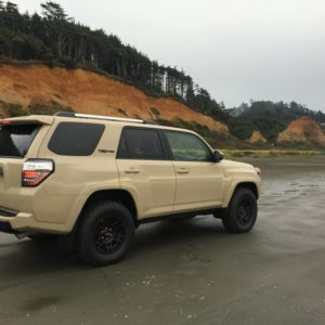 You can drive on the beach at Iron Spring Resort in Washington 2.5 hours from Seattle