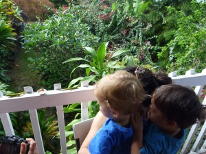 fun things to do in hawaii with kids