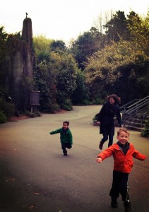 Running at woodland park zoo