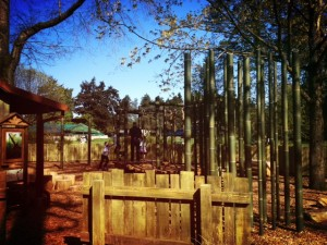 Playground in woodland park zoo