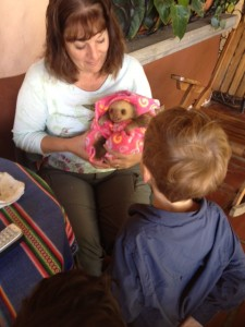 toucan rescue ranch with sloth