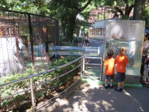 Ueno zoo with kids in Japan near Tokyo