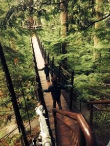 treetop adventure capilano suspension bridgein vancouver is fun with kids