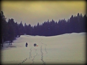 sleddng at suncadia with kids