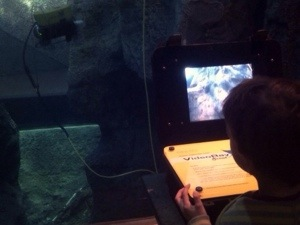 playing with undersea machine at Bishop Museum