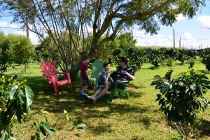 gardens at green world coffee farm