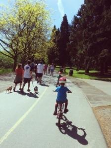 bike with kids in seattle