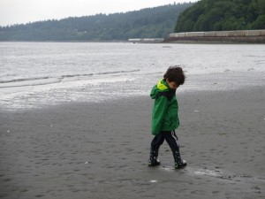 exploring lowtide at carkeek park