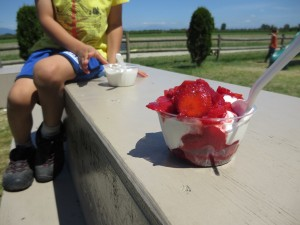 strawberry sundae at Emma Lea farms