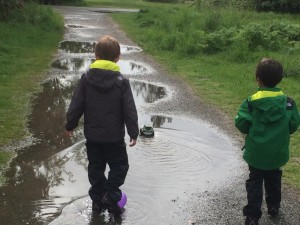 puddles at Discovery Park