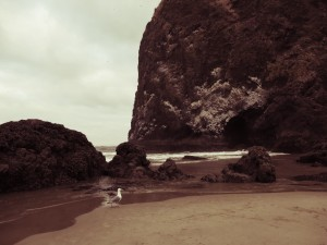 Cannon Beach in oregon with kids