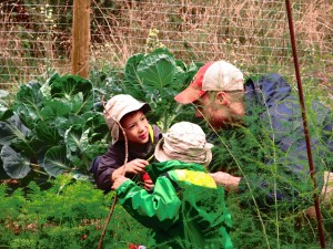 vegetable picking with uncle roo