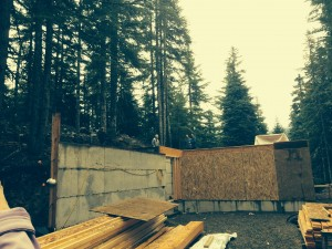 cabin building project in the woods