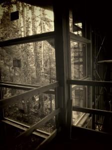buidling a cabin near seattle