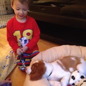 dog nephew as a baby