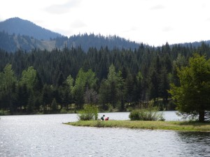 Gold Creek Pond hike with kids