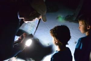 night exploring south water caye