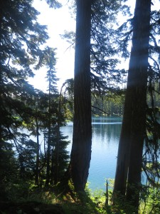 3 mile hike near seattle
