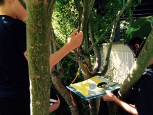 reading books in a tree