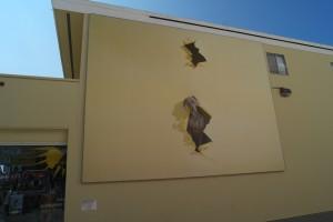 william wegman mural in la jolla