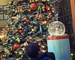 winter wonderland at seattle center