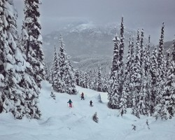 skiing in whistler with kids