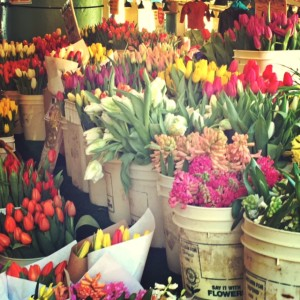 pike place market tulips in february