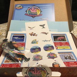 what is in junior explorers box