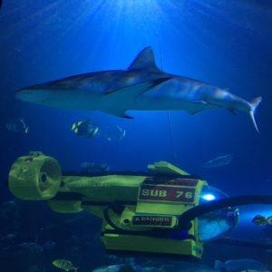 Lego at the sea life aquarium