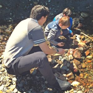 Finding frogs in Snoqualmie Pass